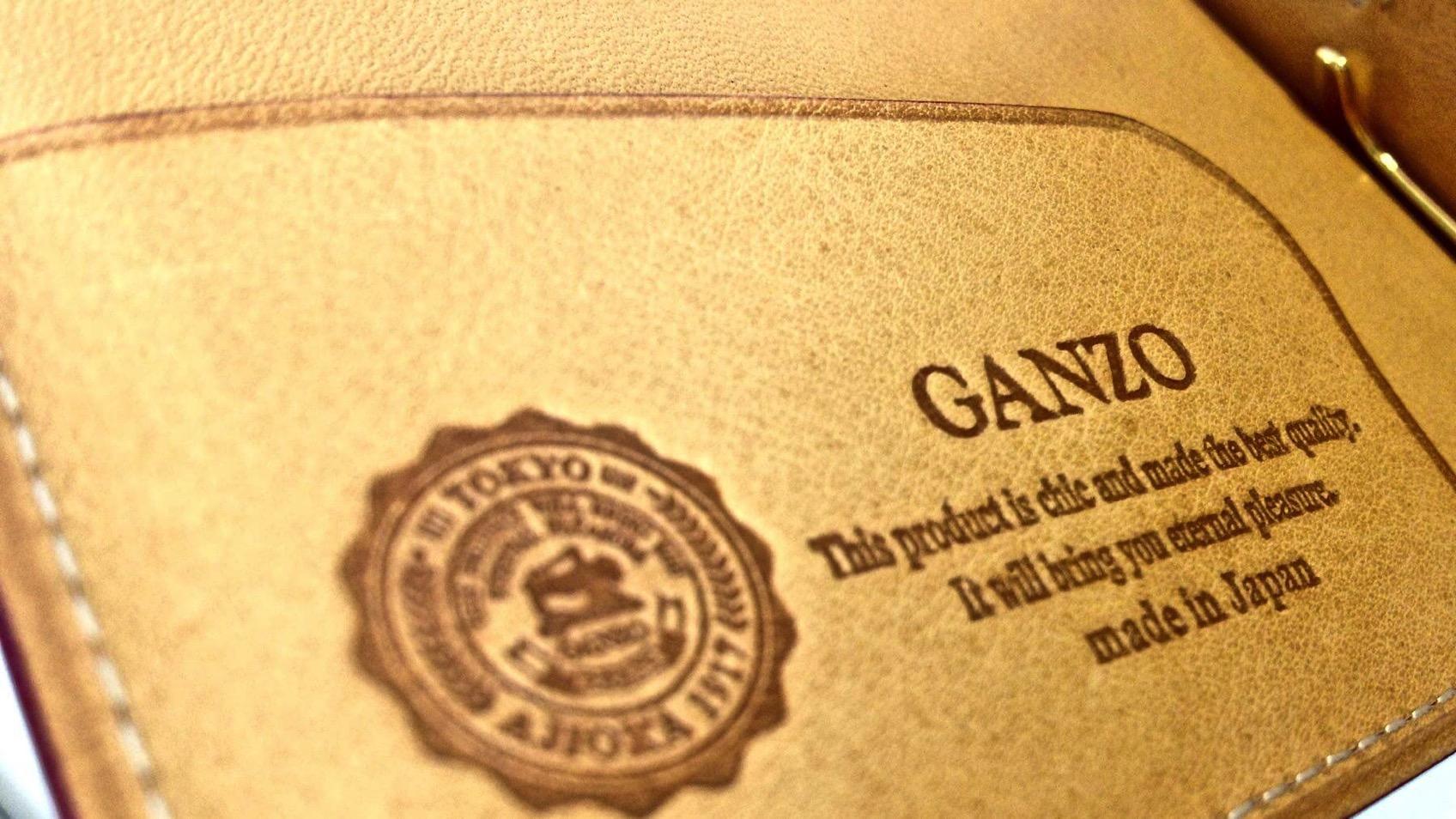 10 Ganzo Thin Bridle Money clip
