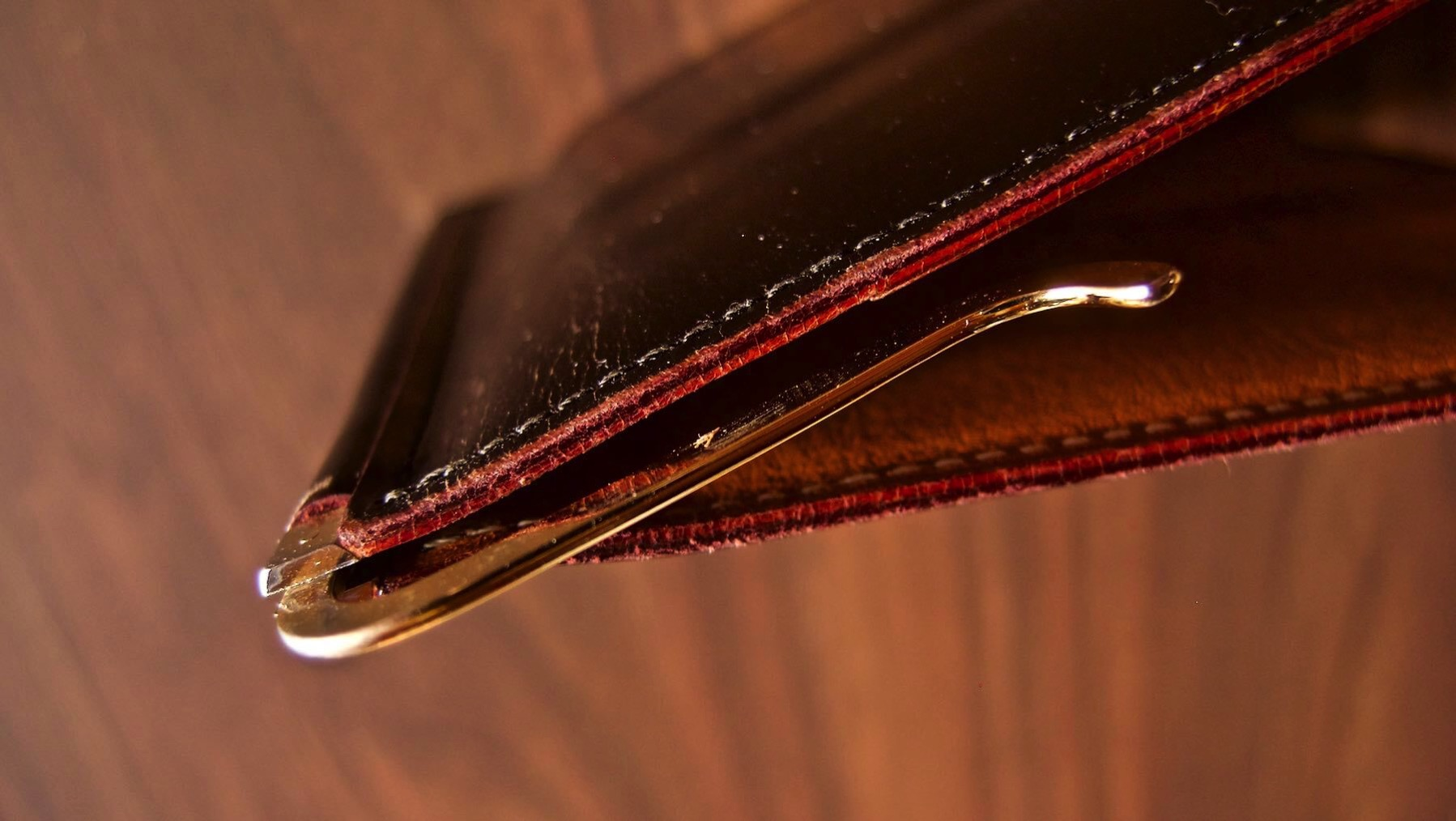 16 GANZO THIN BRIDLE Money clip Five year after aging
