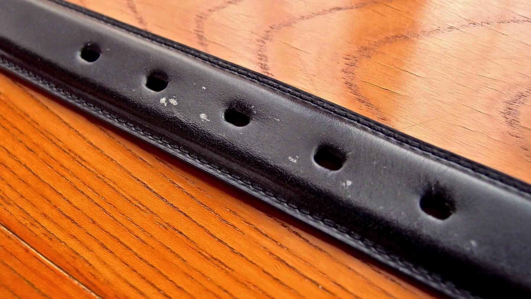 17 Ganzo leather belt BRIDLE