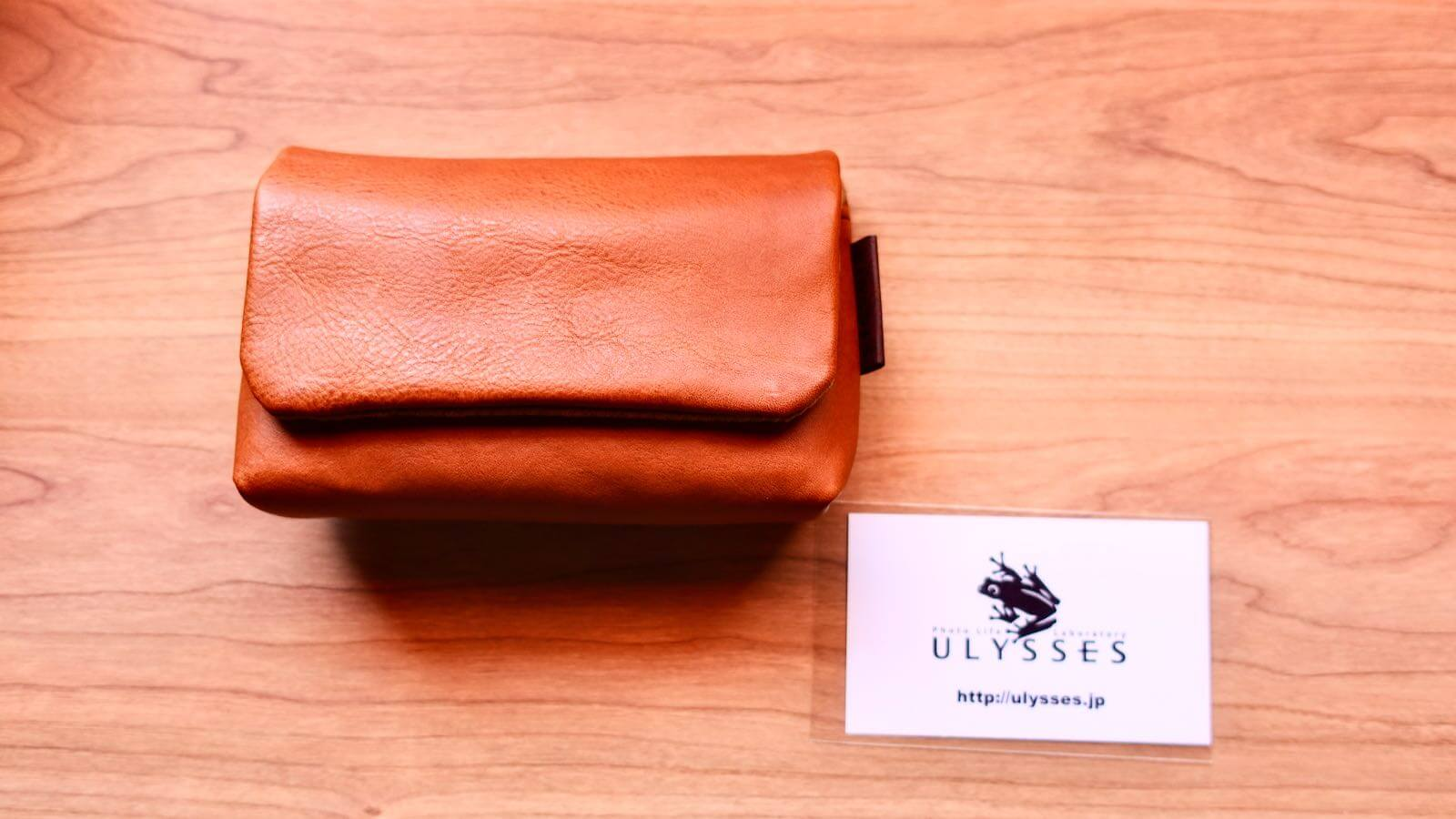 0226 Camera case ULYSSES cuscino Review 10
