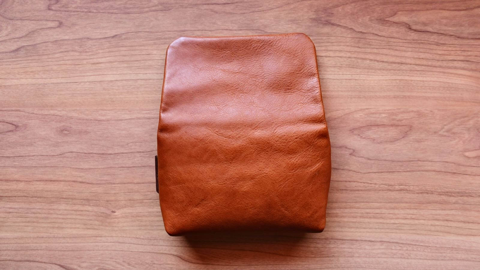 0226 Camera case ULYSSES cuscino Review 13