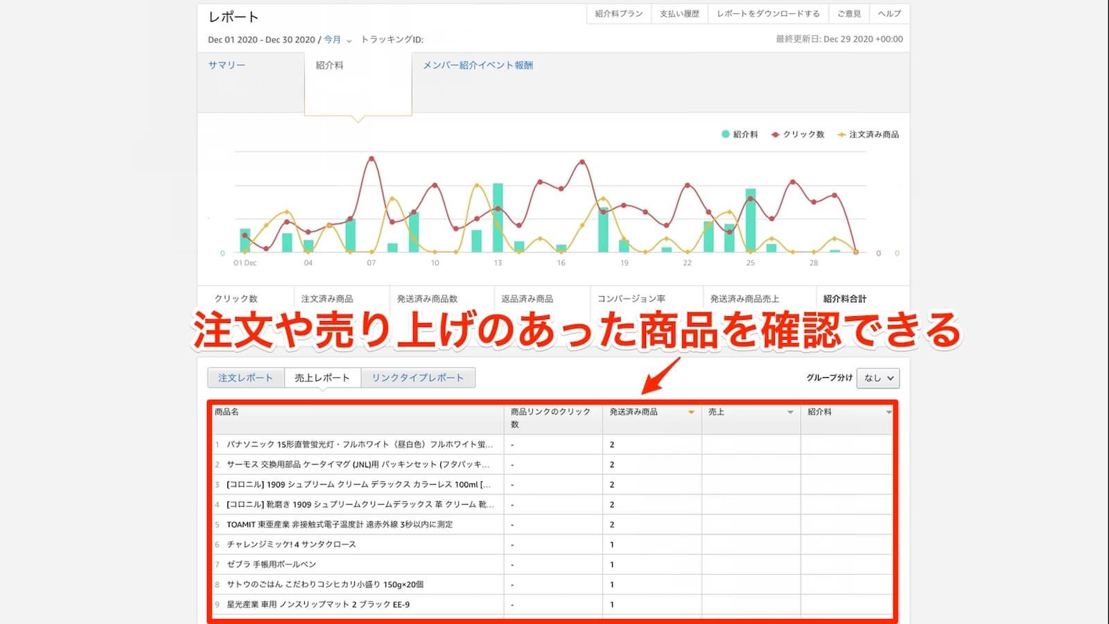 Amazon Associate Sales Report Screen Capture