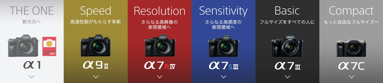 SONY full size A series lineup