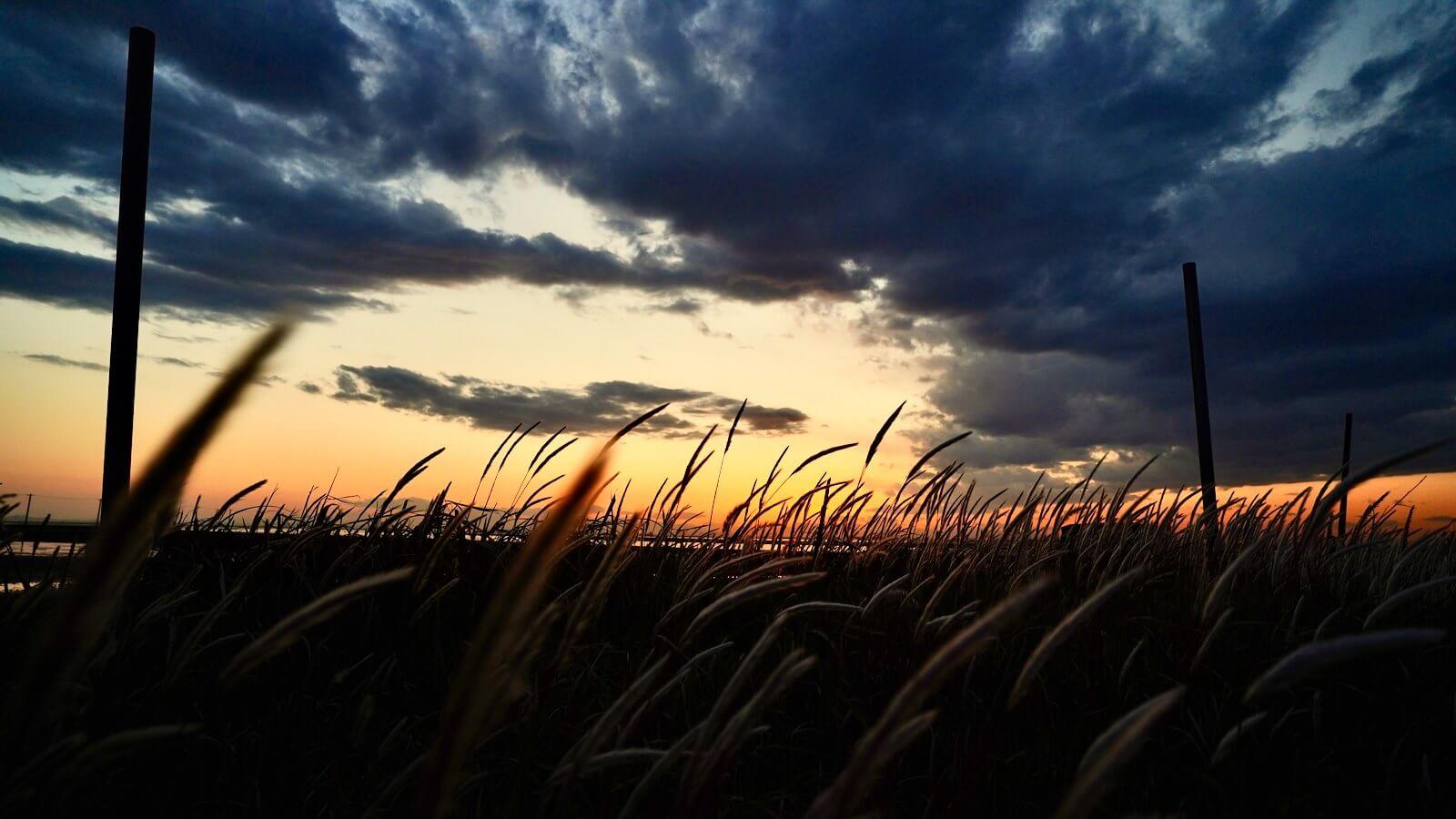 Kuzuma coast at dusk